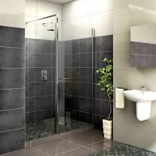 Aquadry Front Panel & Pivoting Splash Panel with Walk-In Entry (W)700mm    Departments   DIY at B&Q