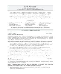 Resume Template Google Docs Simple Cto Resume Examples Sample Resume Resume Templates Google Docs Free