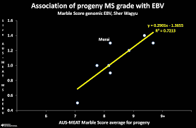 How Many Progeny Tests Are Required To Evaluate Breeding