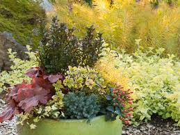 Small Picture 568 best Container gardening images on Pinterest Gardens Plants