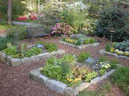 pretty front yard vegetable garden