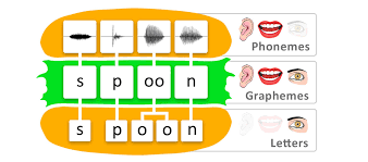 Phonemes And Graphemes Chart Phonemes Graphemes And Letters The Word Burger Reading