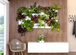 beginning to create indoor gardens my