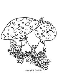 Fiori Piante Funghi Da Colorare