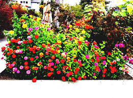 garden design with flower ideas for idea small yards home and decorating beginners tips