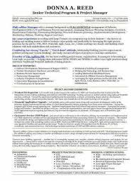 Senior Project Manager Resume Best Of It Project Manager Resume