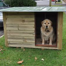 array 0 s steelchief com au wp content uploads 2017 01 timber dog kennel gallery 02 jpg 1 800 2 800 3