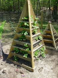 pyramid planter for growing strawberries