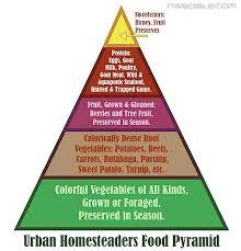 urban homesteaders food pyramid grow your own shit urban homesteaders food pyramid grow your own shit food pyramid urban and homesteads
