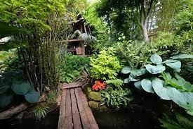 a tropical garden in cold climate