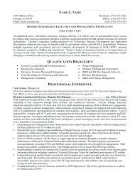 Example Of A Summary For A Resume Cool Samples Of Resume Summary Ahlussunnah