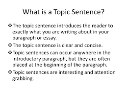 paper rater  once you have developed a working thesis it is time to start thinking about topic sentences for your paper a topic sentence is usually the first sentence