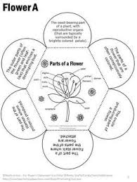 8fc67f7d07f40146fc5241c0d4527ea8 plant science science labs 25 best ideas about ag science on pinterest life science, parts on mendelian genetics worksheet