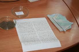 Контрольное обследование очагов непарного шелкопряда Российские  Контрольное обследование очагов непарного шелкопряда
