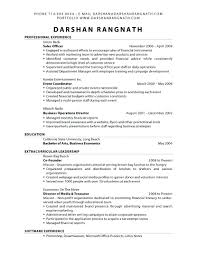 Funky Events Planner Resume Pattern Documentation Template Example