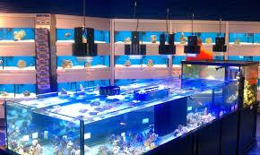 led lighting diy. Diy Led Aquarium Lighting Ebay