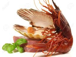 Prawn - Shrimp Carabinero On White ...