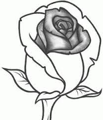 Lezione Come Disegnare Una Rosa