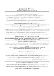 Best Executive Resume Format Gorgeous Marketing Executive Resume Examples Great Executive Resumes Great
