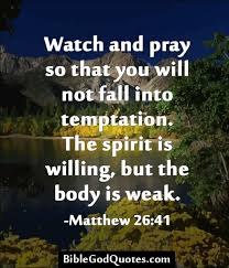 Christian Temptation Quotes Best of Watch And Pray So That You Will Not Fall Into Temptation The Spirit
