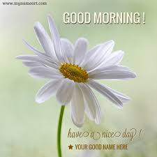Unique Good Morning Image With Name Wishes Greeting Card Unique Goodmorning Unique Images