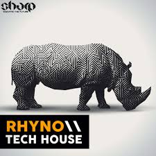 Rhyno Tech House