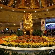 the proud symbol of mgm grand