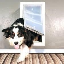 endura flap pet door flap pet door rescue dog doors for walls endura flap dog door