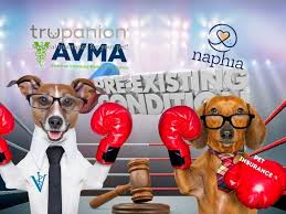 When you click on start quote, or get your workers' compensation quote you will be taken to the biberk. Trupanion Ceo Breaks Ranks With Pet Insurance Industry Trade Group Says Trupanion Is Totally Aligned With The Avma The Canine Review