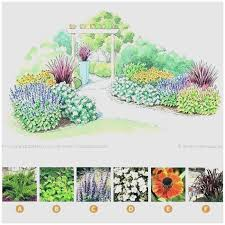 small garden plans small garden plans full image for evergreen shrub garden plans garden plan small