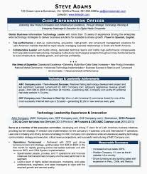 Ceo Resume Sample Doc Awesome Ceo Resume Sample Doc Cv Templates