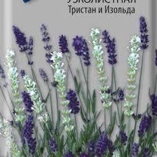 <b>Лаванда</b> - <b>Семена</b> цветов в цветных пакетах - <b>Семена</b> - Каталог ...