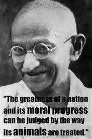 Celebrate Gandhi's Birthday by Bringing Non-Violence Into Your ...
