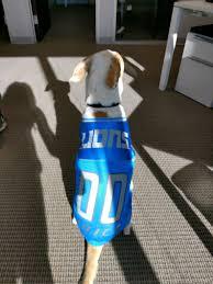 Detroit Lions Dog Jersey Personalized Xs Xxl Nfl Pet Clothes Pet Apparel Pet Clothing Cat Clothes Dog Clothes Sports Fan