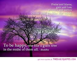Tree Of Life Quote Stunning 48 Best Tree Quotes Sayings