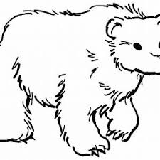 Small Picture Polar Bear Coloring Pages Winter Of Polar Winter adult