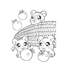 Hamster Coloring Pages Books 100 Free And Printable