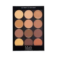 professional palette correct conceal dark
