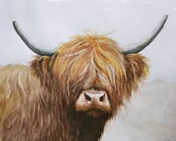 highland cow painting by alison bro