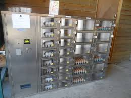 Egg Vending Machine Beauteous Swefflings Egg Vending Machine Picture Of Lantern Larks