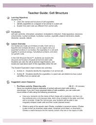 Students will learn about the different types of mechanical and chemical. Student Exploration Cell Division Gizmo Page 1 Line 17qq Com