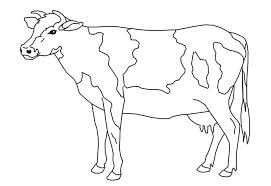 Cow Template Cow Template Printable Barrest Info