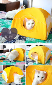 easy t shirt and wire hanger cat tent