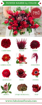 diffe types of flowers with names meanings and types of flowers with pictures