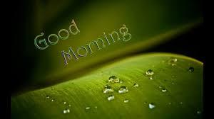 good morning photo good morning photo hd wallpapers free for whatsapp fb