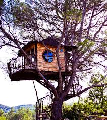 Image Result For Mid Century Modern Tree House  Treehouse1 Treehouse Builder Pete Nelson
