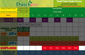 Dutchpro Explode