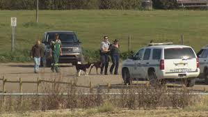 Stony Plain dog park site of standoff over herbicide use | CBC News
