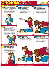 Resuscitation Chart Pdf Printable First Aid And Cpr Choking First Aid First Aid