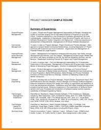 Good Summary For A Resume Executive Summary Resume Example
